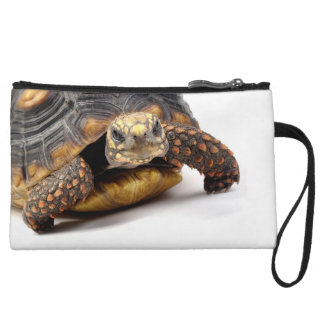 Turtle on Parade Wristlet