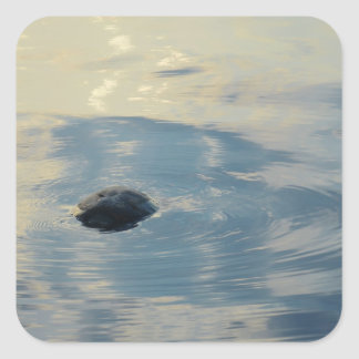 Turtle On The Surface Square Sticker