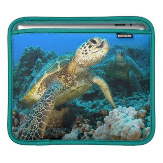 Turtle Pair iPad Sleeve