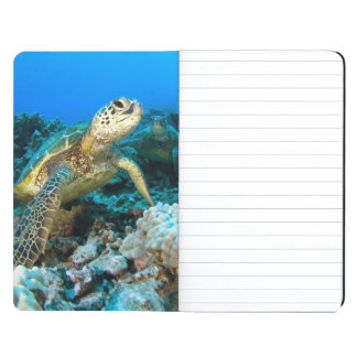 Turtle Pair Journal