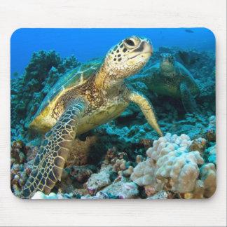 Turtle Pair Mouse Mat