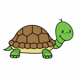 Turtle Photo Sculpture