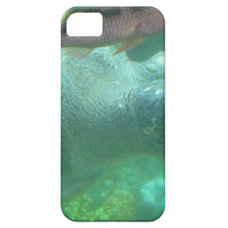 Turtle Products iPhone 5 Cover