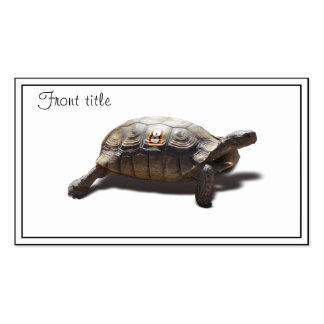 Turtle Racer #8 Business Card