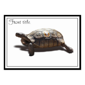 Turtle Racer #8 Pack Of Chubby Business Cards