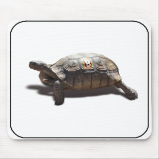 Turtle Racer 8 Mouse Pad