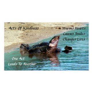 Turtle Random Acts of Kindness Card Business Cards