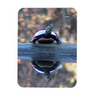 Turtle reflection magnet ( flexible)