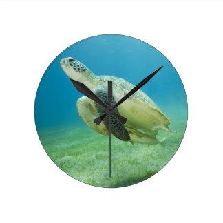 Turtle Round Clock