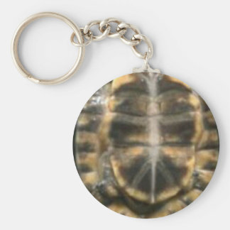 turtle shell key ring