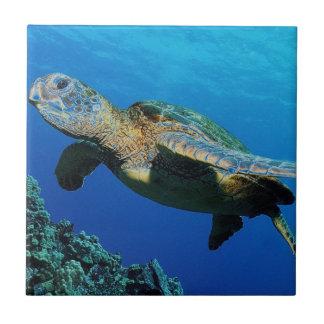 TURTLE SWIMMING IN AQUA COLORED OCEAN TILE