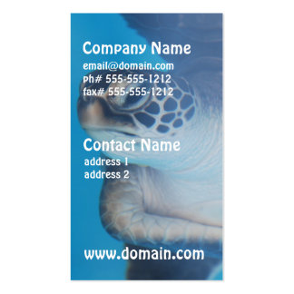 Turtle Underwater Business Business Cards