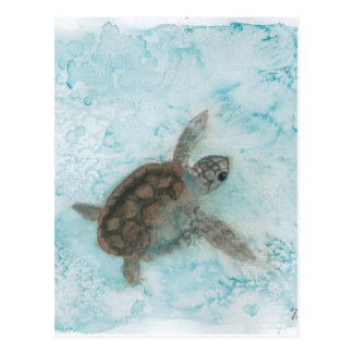 Turtle Watercolor Painting Postcard