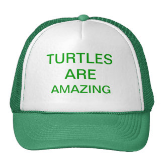turtles are amazing cap