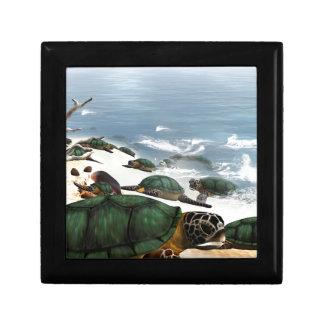 Turtles Gift Box