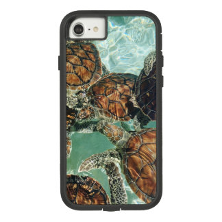 Turtles in Mexico (Kimberly Turnbull Photography) Case-Mate Tough Extreme iPhone 8/7 Case