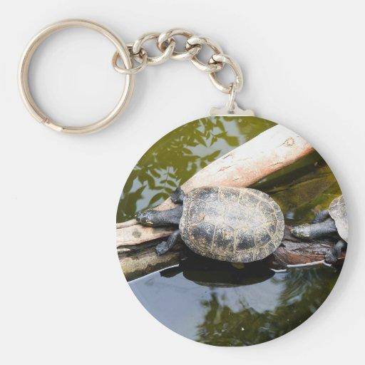 Turtles Keychain