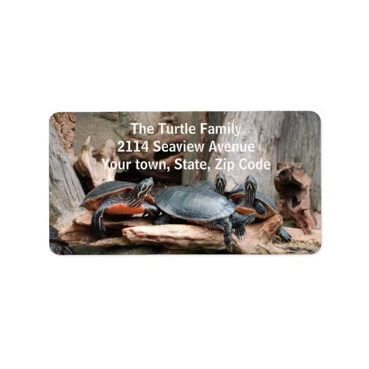 Turtles Photo Address Labels
