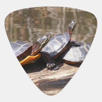 Turtles Sitting On Log Guitar Pick