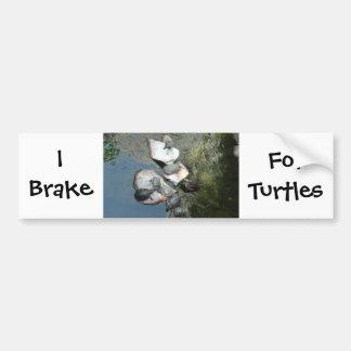 Turtles/Tortoises Bumper Sticker