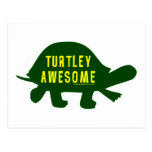 Turtley Totally Awesome Postcards