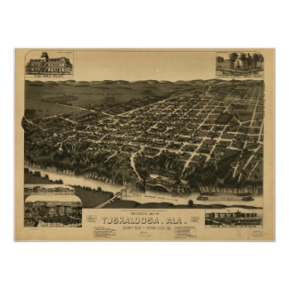 Tuscaloosa Alabama 1887 Panoramic Map Poster