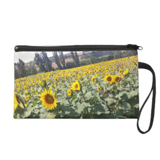 Tuscan Sunflowers Wristlet Clutches
