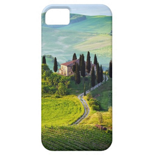Tuscany iPhone 5 Covers