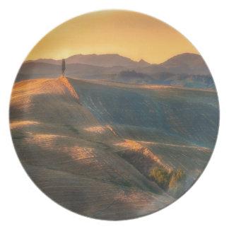 Tuscany Cypress Plate