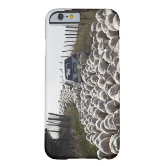 tuscany farmland road, car blocked by herd of barely there iPhone 6 case