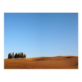 Tuscany landscape with cypresses postcard