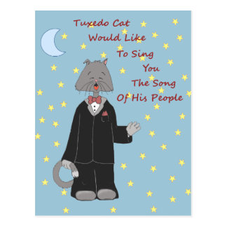 Tuxedo Cat 2 In the Morning Postcard