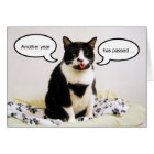 Tuxedo Cat Birthday Humour Card