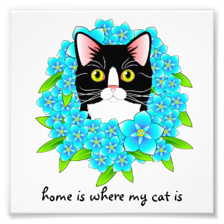 Tuxedo Cat Home Heart Forget Me Not Sign Photograph