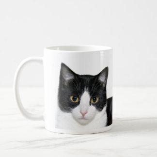 Tuxedo cat basic white mug