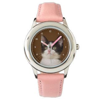 Tuxedo Cat With Staff Watch