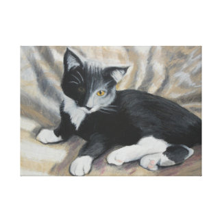 Tuxedo Kitten Stretched Canvas Print