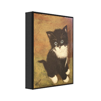 Tuxedo Kitten Canvas Print