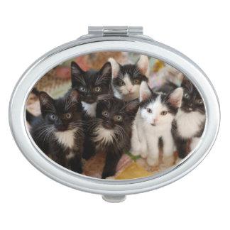 Tuxedo Kitten Group Compact Mirrors