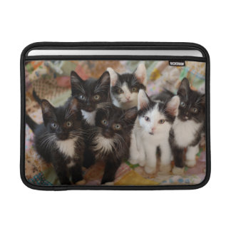 Tuxedo Kitten Group Sleeves For MacBook Air