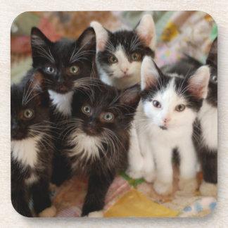 Tuxedo Kittens Coaster