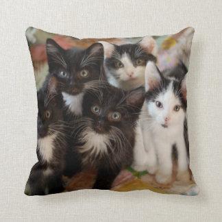 Tuxedo Kittens Cushion