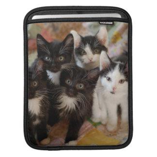 Tuxedo Kittens iPad Sleeve