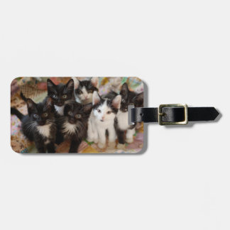 Tuxedo Kittens Luggage Tag