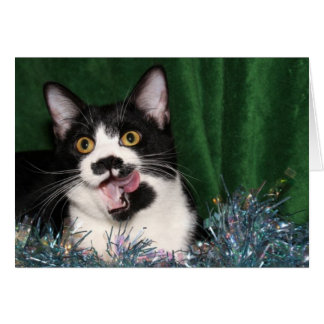 Tuxedo kitty Christmas Card