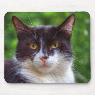 Tuxedo Portrait Mouse Pad