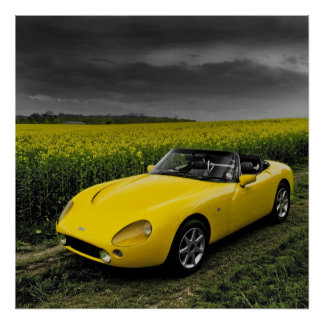 TVR Griffith Print