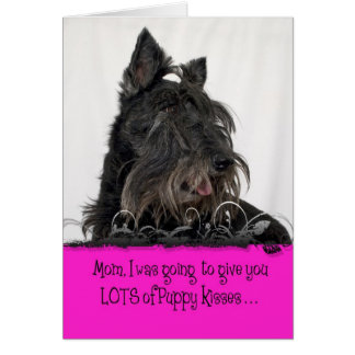 Tweed Mother's Day Licker License Greeting Card