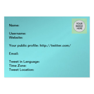 Tweet Info The MUSEUM Zazzle Gifts Pack Of Chubby Business Cards