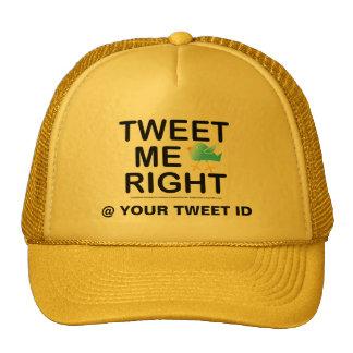 Tweet Me Right WHT2228 Cap